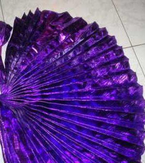 pleated purplewingsjpg