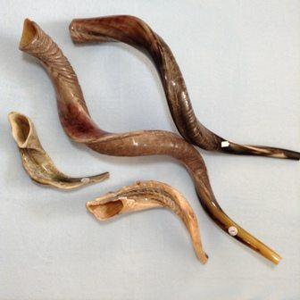 Shofars, Ram Horns & Trumpets
